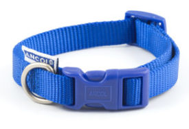 Nylon Adjustable Collar