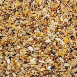 Value Seed