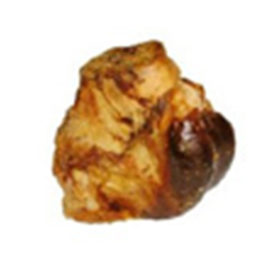 Roast Bone
