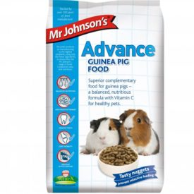 Mr Johnson's Advanced Guinea Pig