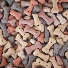 Chewdles Assorted Mini Bonibix